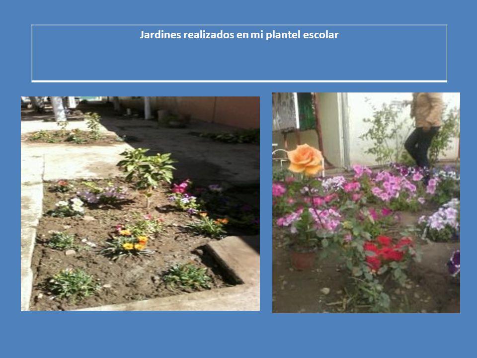Jardines realizados en mi plantel escolar