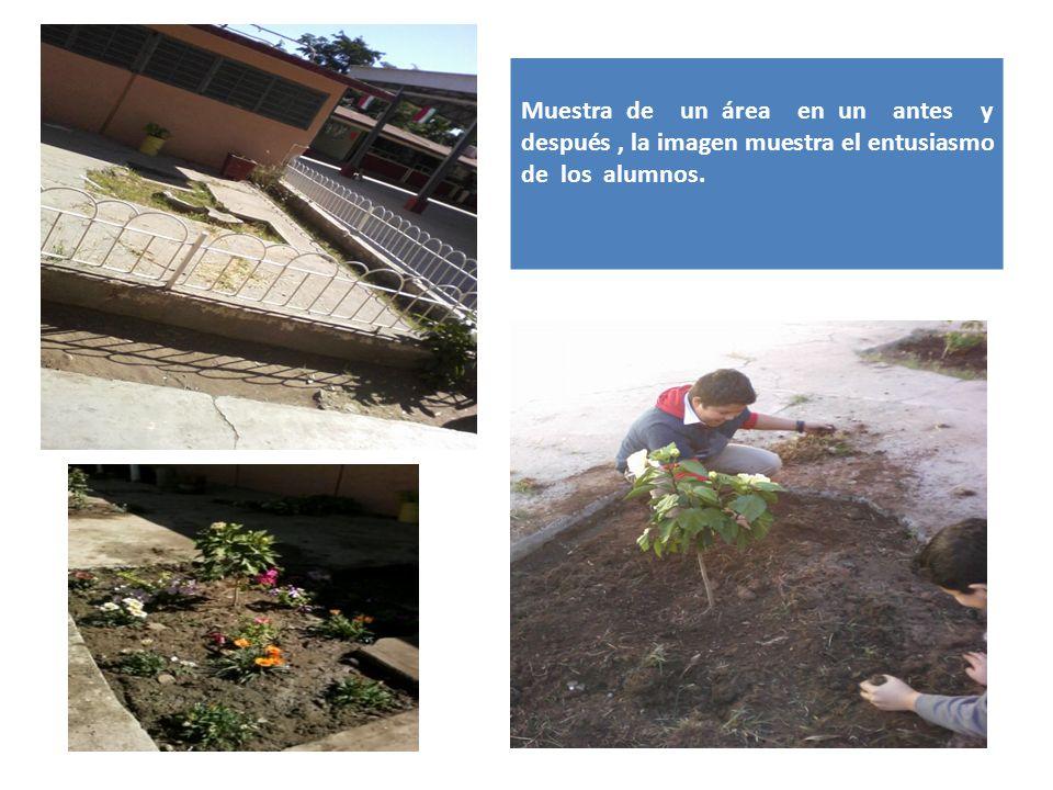 Muestra de un área en un antes y después , la imagen muestra el entusiasmo de los alumnos.