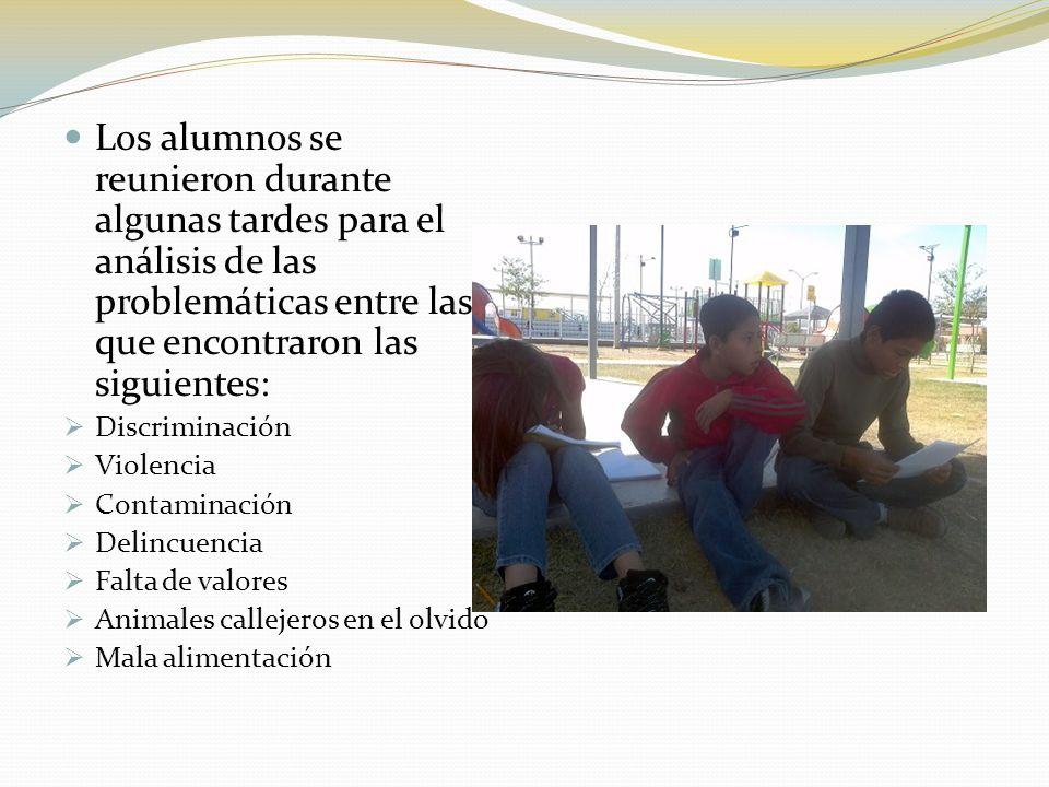 Los alumnos se reunieron durante algunas tardes para el análisis de las problemáticas entre las que encontraron las siguientes: