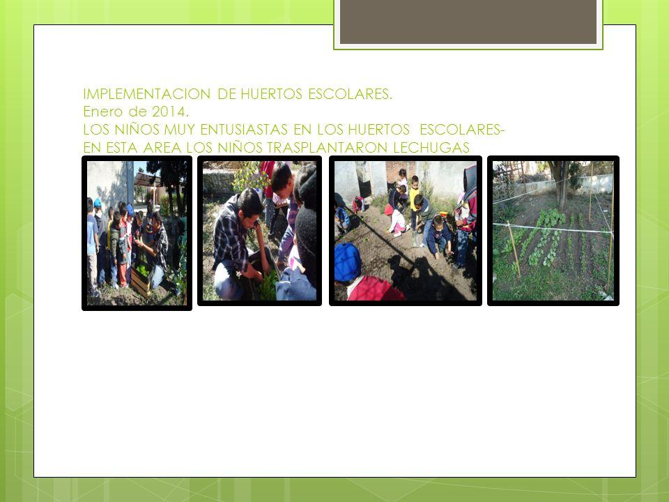 IMPLEMENTACION DE HUERTOS ESCOLARES. Enero de 2014