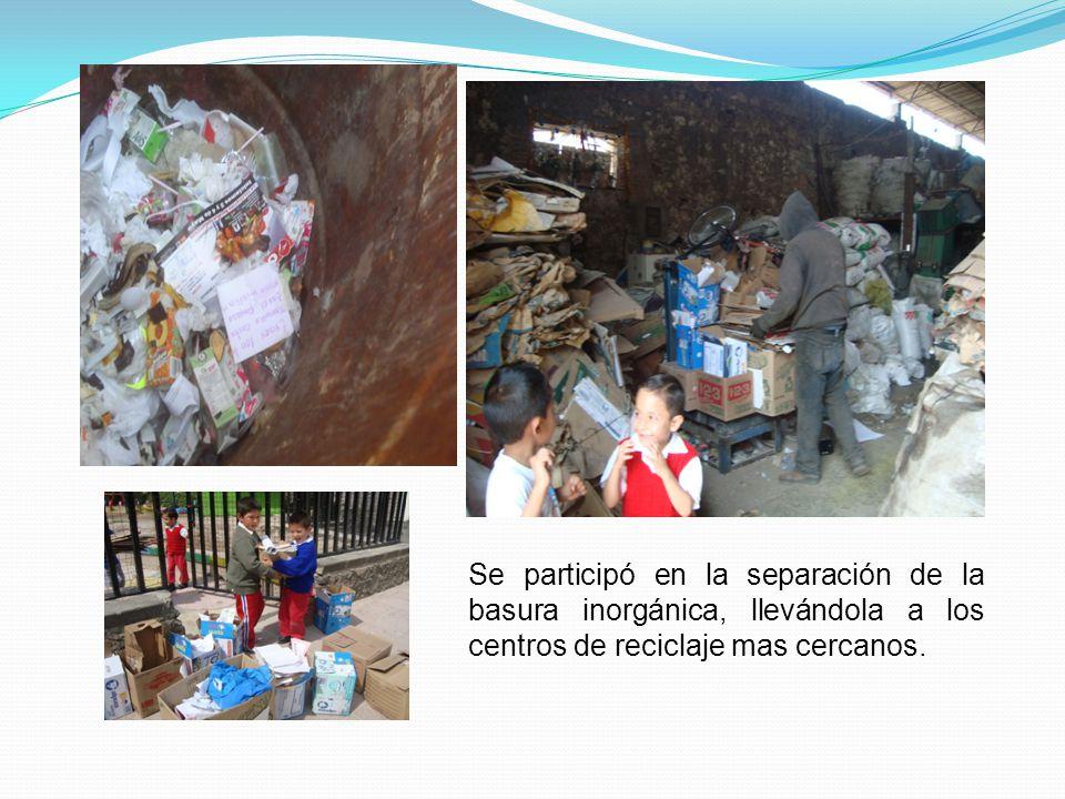 Se participó en la separación de la basura inorgánica, llevándola a los centros de reciclaje mas cercanos.