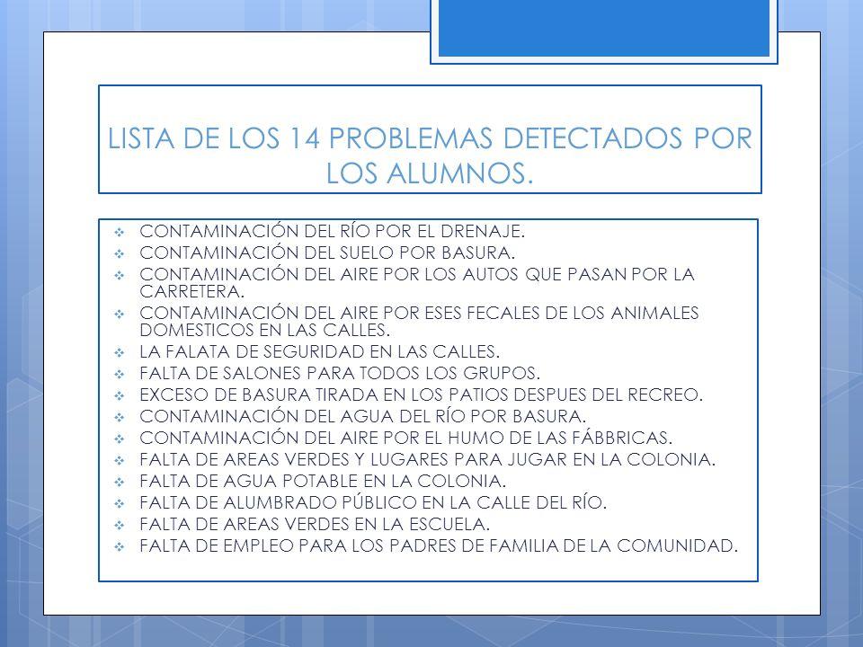 LISTA DE LOS 14 PROBLEMAS DETECTADOS POR LOS ALUMNOS.