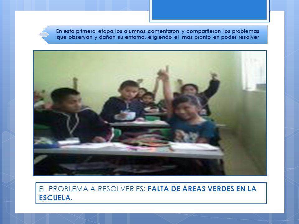 EL PROBLEMA A RESOLVER ES: FALTA DE AREAS VERDES EN LA ESCUELA. .