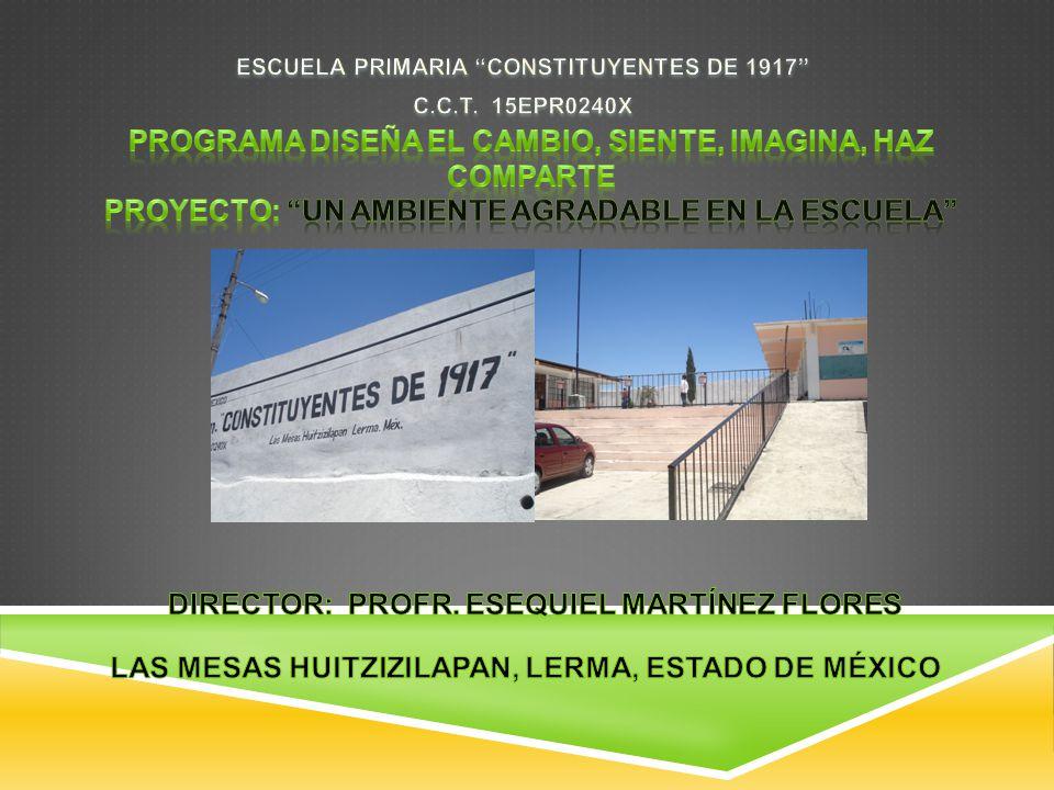 ESCUELA PRIMARIA CONSTITUYENTES DE 1917 C.C.T. 15EPR0240X