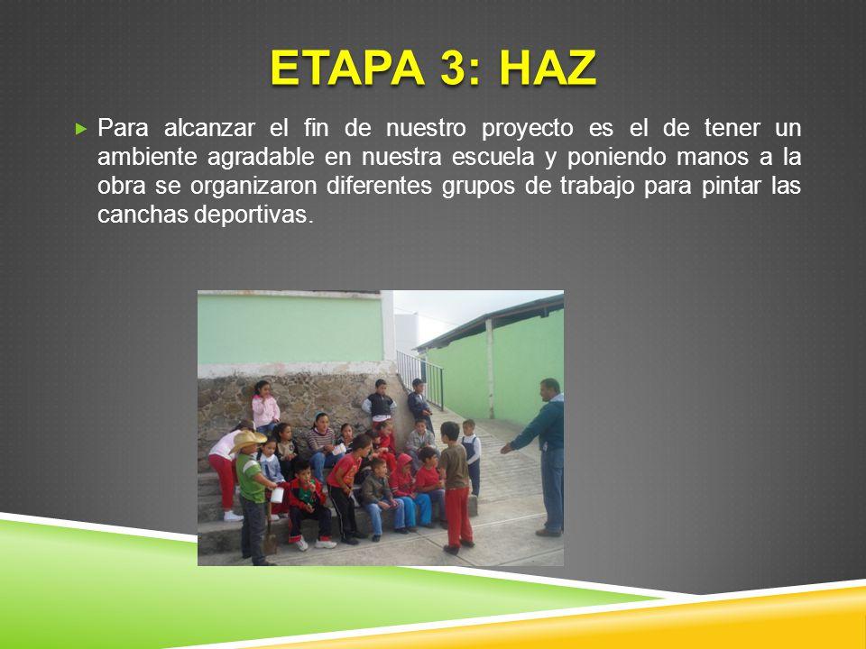 ETAPA 3: HAZ