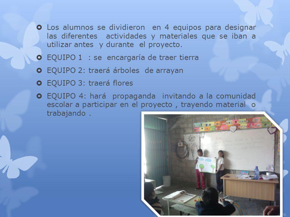 Los alumnos se dividieron en 4 equipos para designar las diferentes actividades y materiales que se iban a utilizar antes y durante el proyecto.