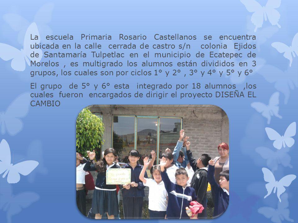 La escuela Primaria Rosario Castellanos se encuentra ubicada en la calle cerrada de castro s/n colonia Ejidos de Santamaría Tulpetlac en el municipio de Ecatepec de Morelos , es multigrado los alumnos están divididos en 3 grupos, los cuales son por ciclos 1° y 2° , 3° y 4° y 5° y 6°