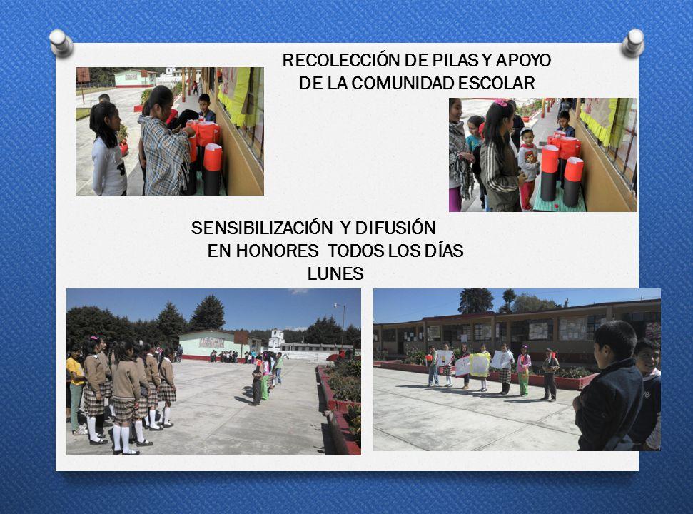 RECOLECCIÓN DE PILAS Y APOYO DE LA COMUNIDAD ESCOLAR