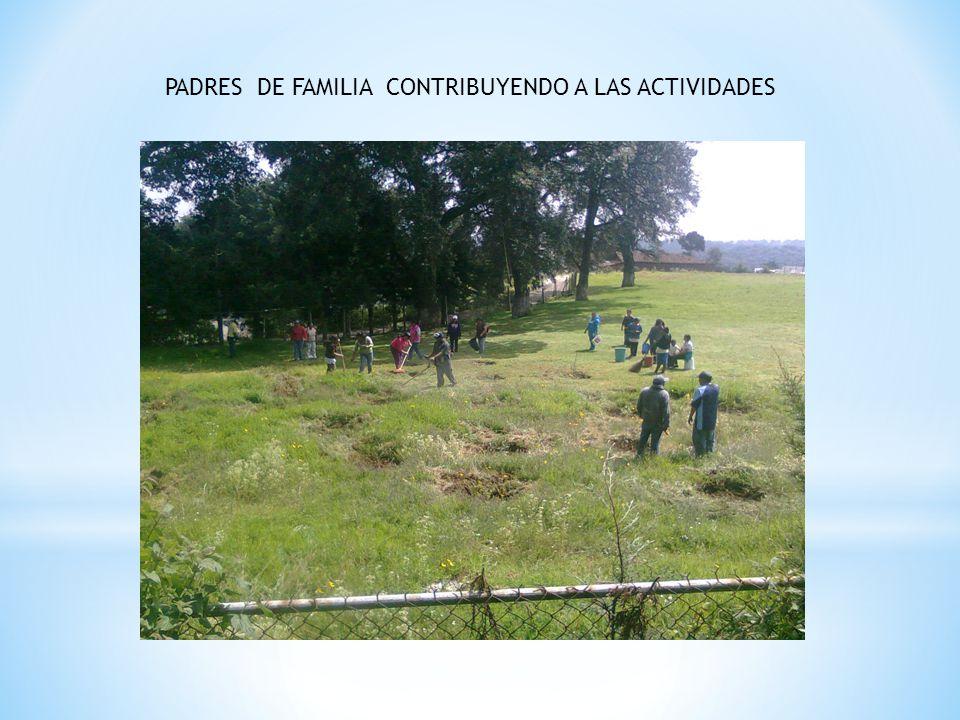 PADRES DE FAMILIA CONTRIBUYENDO A LAS ACTIVIDADES