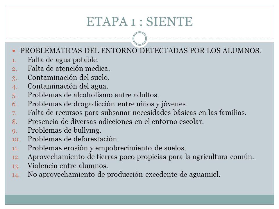 ETAPA 1 : SIENTE PROBLEMATICAS DEL ENTORNO DETECTADAS POR LOS ALUMNOS: