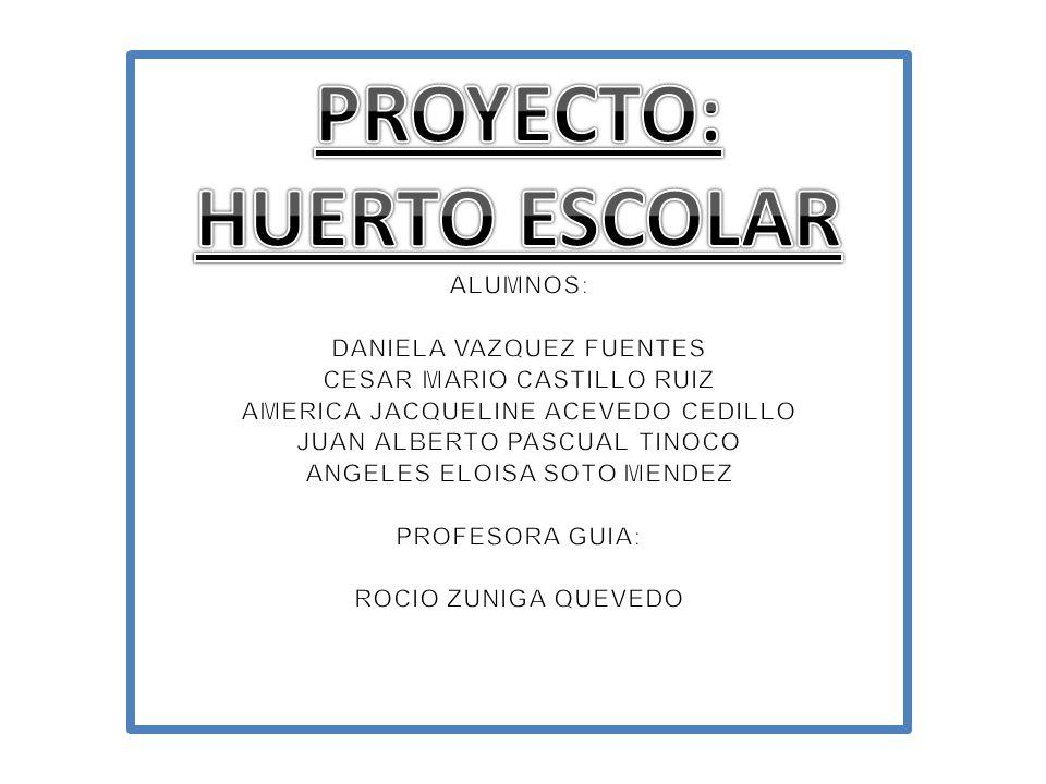 PROYECTO: HUERTO ESCOLAR