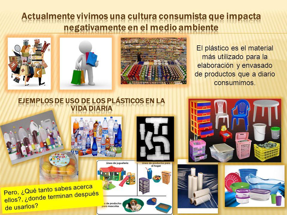 Ejemplos de Uso de Los plásticos en la vida diaria