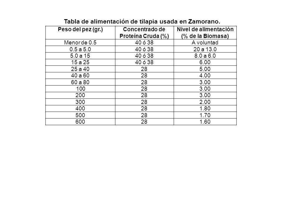 Tabla de alimentación de tilapia usada en Zamorano.