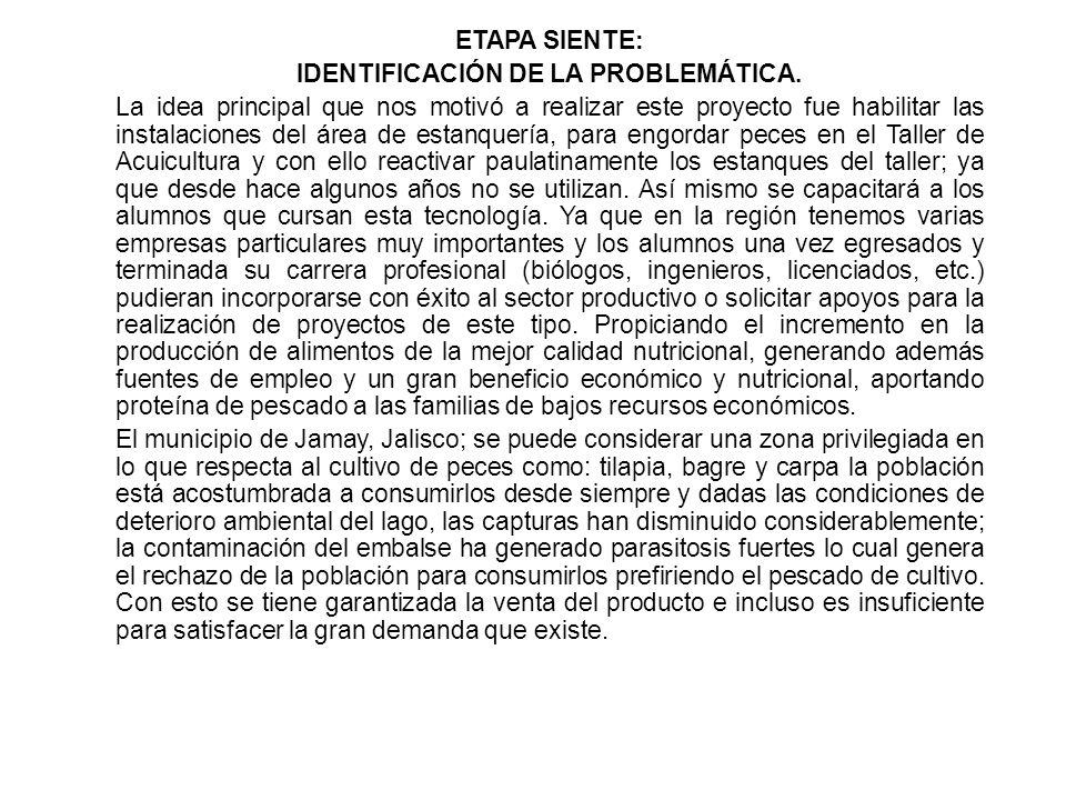 IDENTIFICACIÓN DE LA PROBLEMÁTICA.