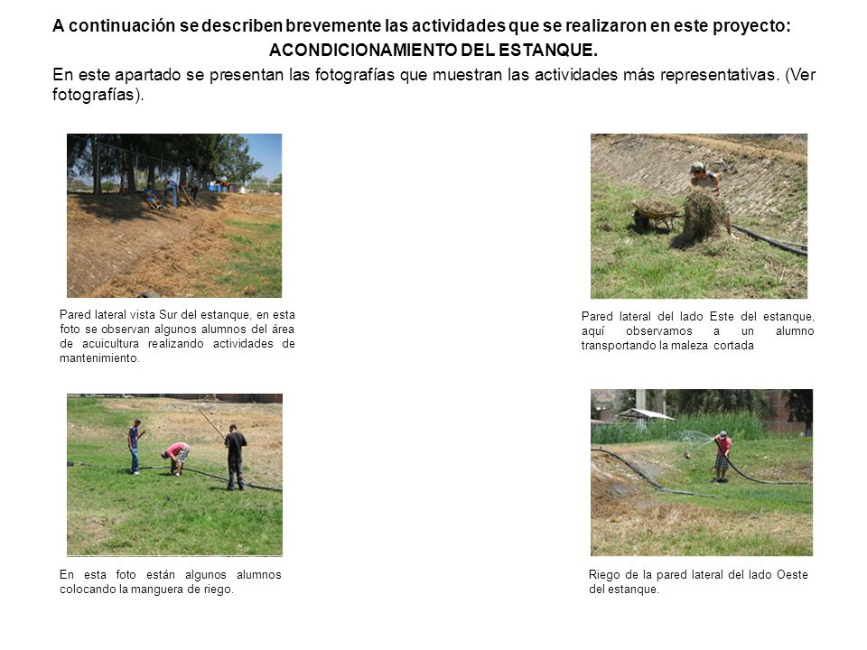 A continuación se describen brevemente las actividades que se realizaron en este proyecto: ACONDICIONAMIENTO DEL ESTANQUE. En este apartado se presentan las fotografías que muestran las actividades más representativas. (Ver fotografías).