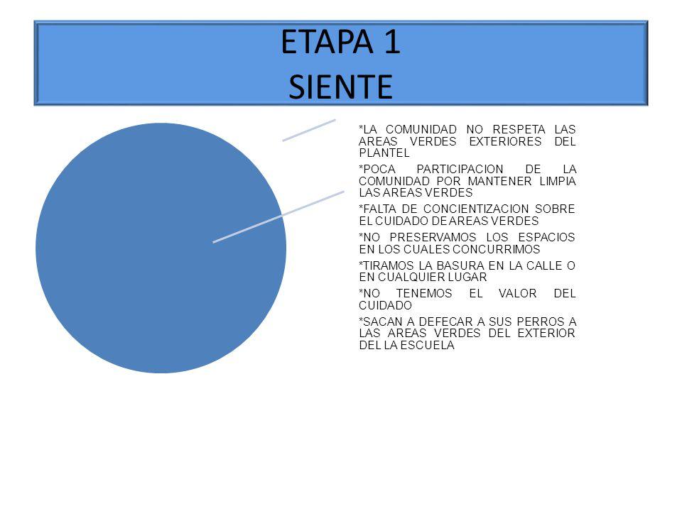 ETAPA 1 SIENTE *LA COMUNIDAD NO RESPETA LAS AREAS VERDES EXTERIORES DEL PLANTEL.