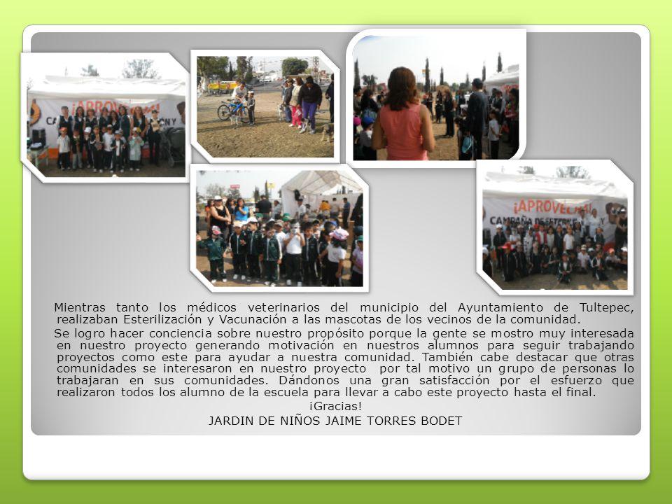 Mientras tanto los médicos veterinarios del municipio del Ayuntamiento de Tultepec, realizaban Esterilización y Vacunación a las mascotas de los vecinos de la comunidad.