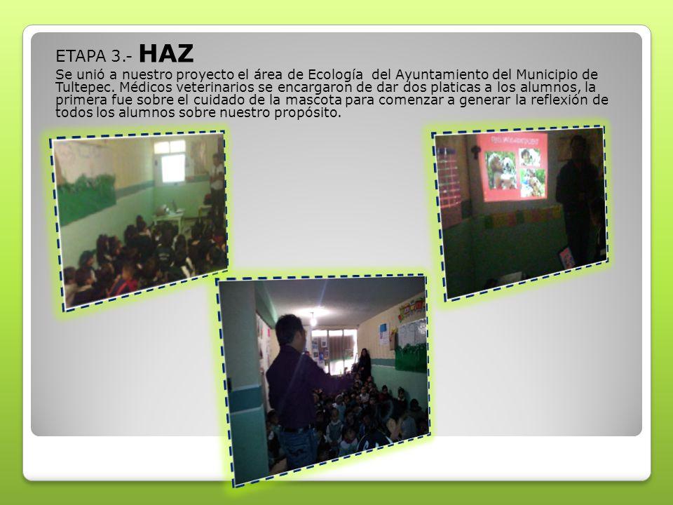 ETAPA 3.- HAZ