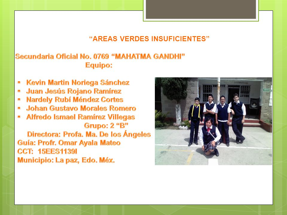 AREAS VERDES INSUFICIENTES