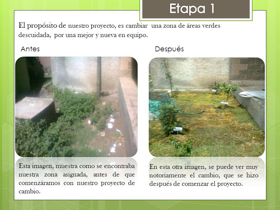 Etapa 1 El propósito de nuestro proyecto, es cambiar una zona de áreas verdes. descuidada, por una mejor y nueva en equipo.