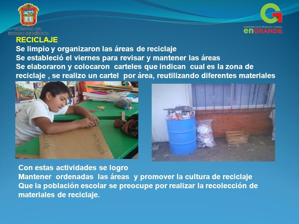 RECICLAJE Se limpio y organizaron las áreas de reciclaje. Se estableció el viernes para revisar y mantener las áreas.