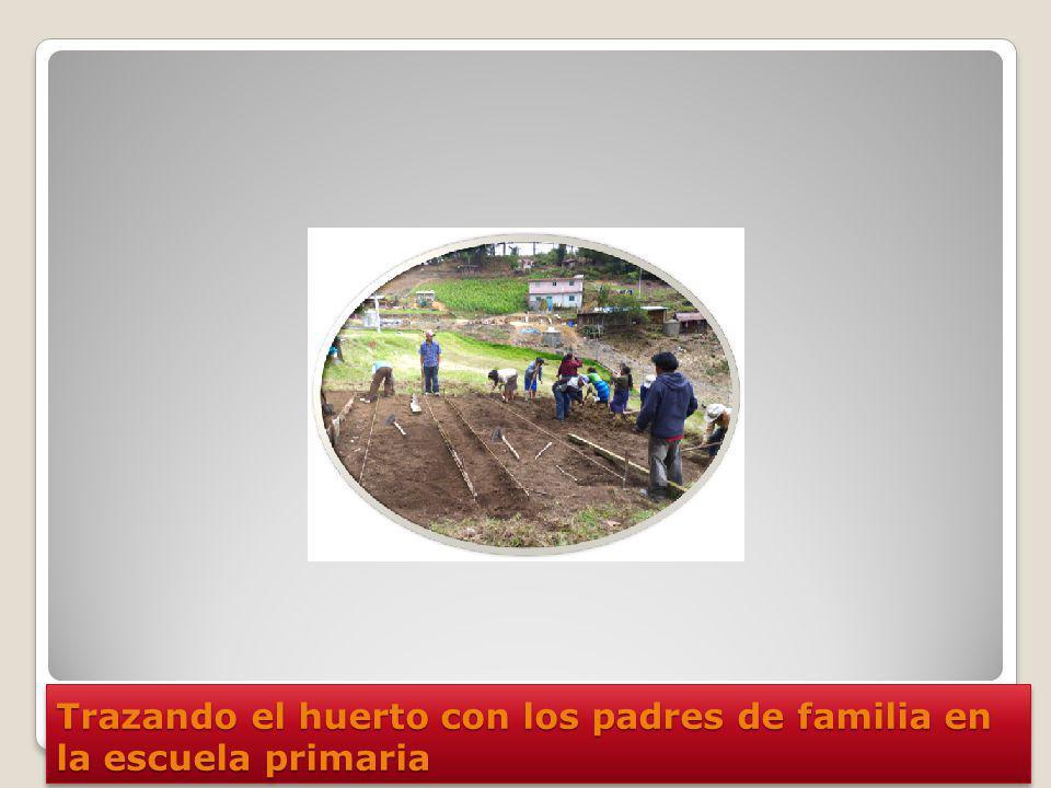 Trazando el huerto con los padres de familia en la escuela primaria