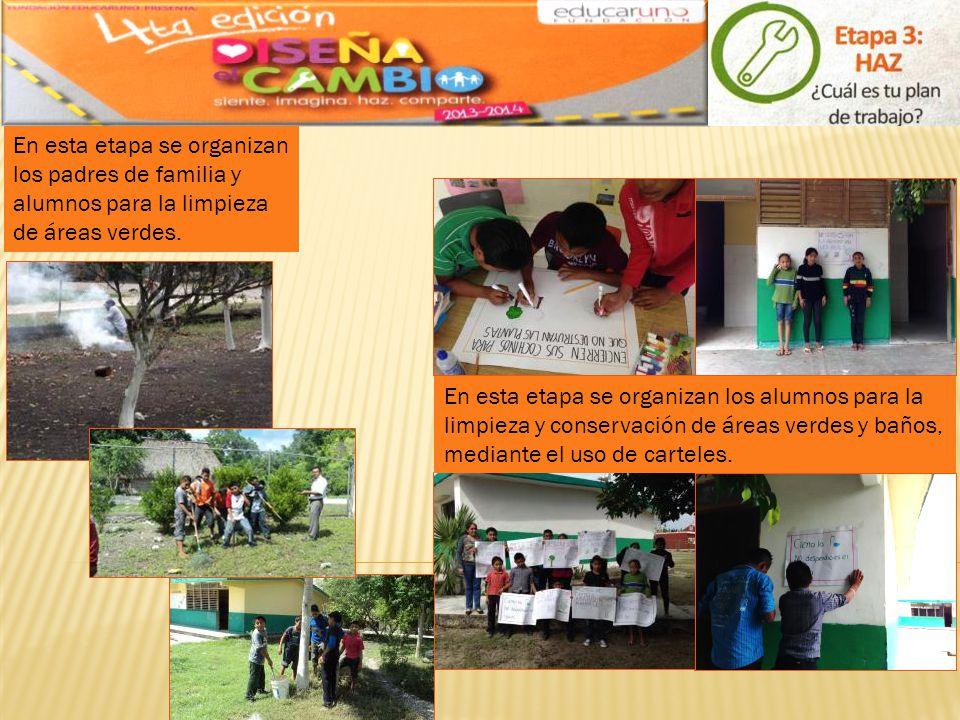 En esta etapa se organizan los padres de familia y alumnos para la limpieza de áreas verdes.