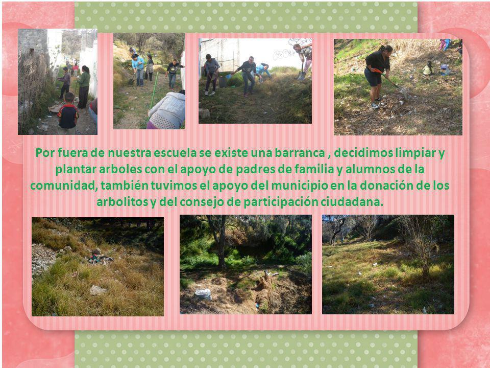 Por fuera de nuestra escuela se existe una barranca , decidimos limpiar y plantar arboles con el apoyo de padres de familia y alumnos de la comunidad, también tuvimos el apoyo del municipio en la donación de los arbolitos y del consejo de participación ciudadana.