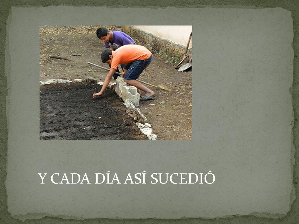 Y CADA DÍA ASÍ SUCEDIÓ