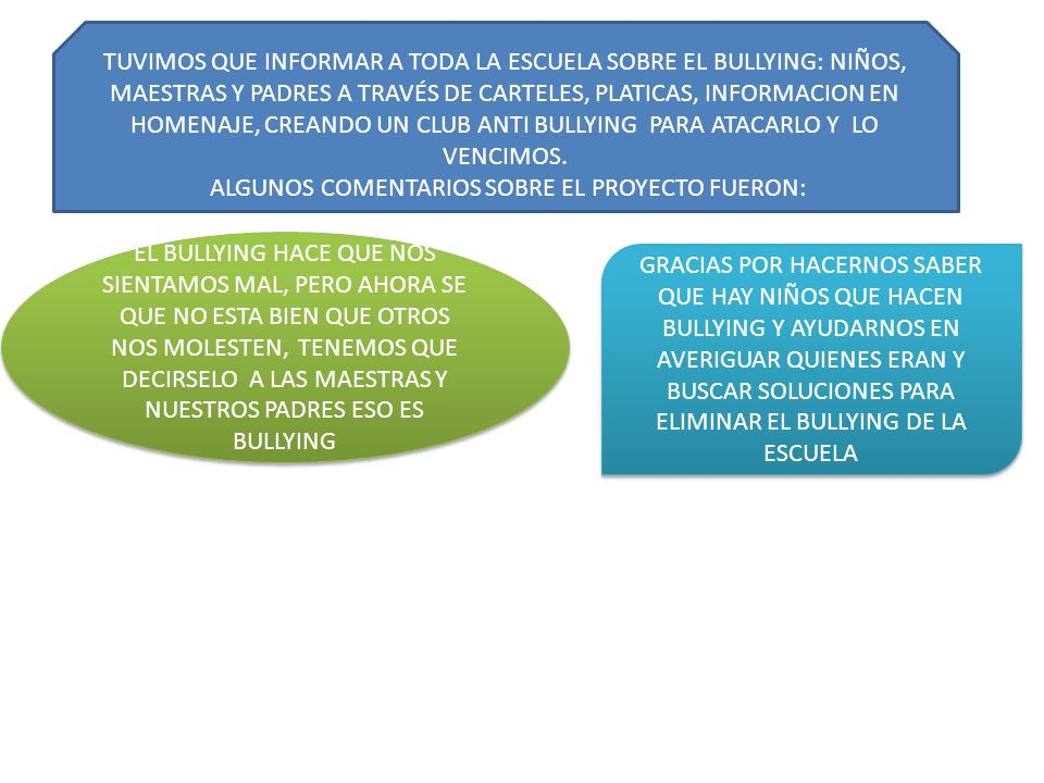 ALGUNOS COMENTARIOS SOBRE EL PROYECTO FUERON: