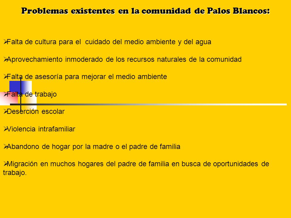 Problemas existentes en la comunidad de Palos Blancos: