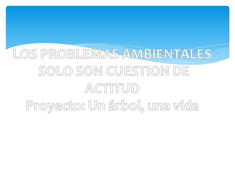 LOS PROBLEMAS AMBIENTALES SOLO SON CUESTION DE ACTITUD Proyecto: Un árbol, una vida