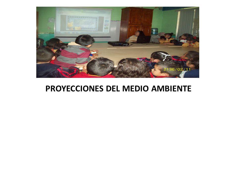 PROYECCIONES DEL MEDIO AMBIENTE
