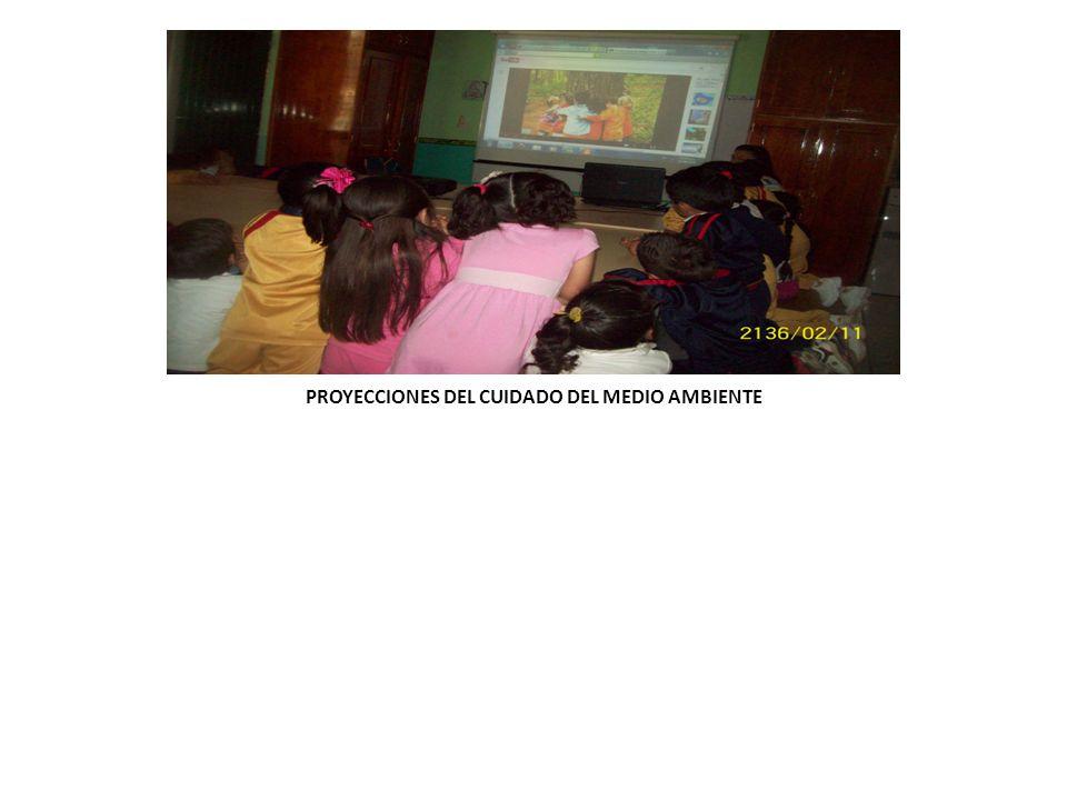 PROYECCIONES DEL CUIDADO DEL MEDIO AMBIENTE