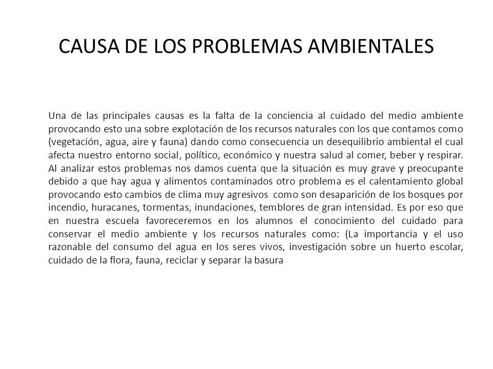 CAUSA DE LOS PROBLEMAS AMBIENTALES