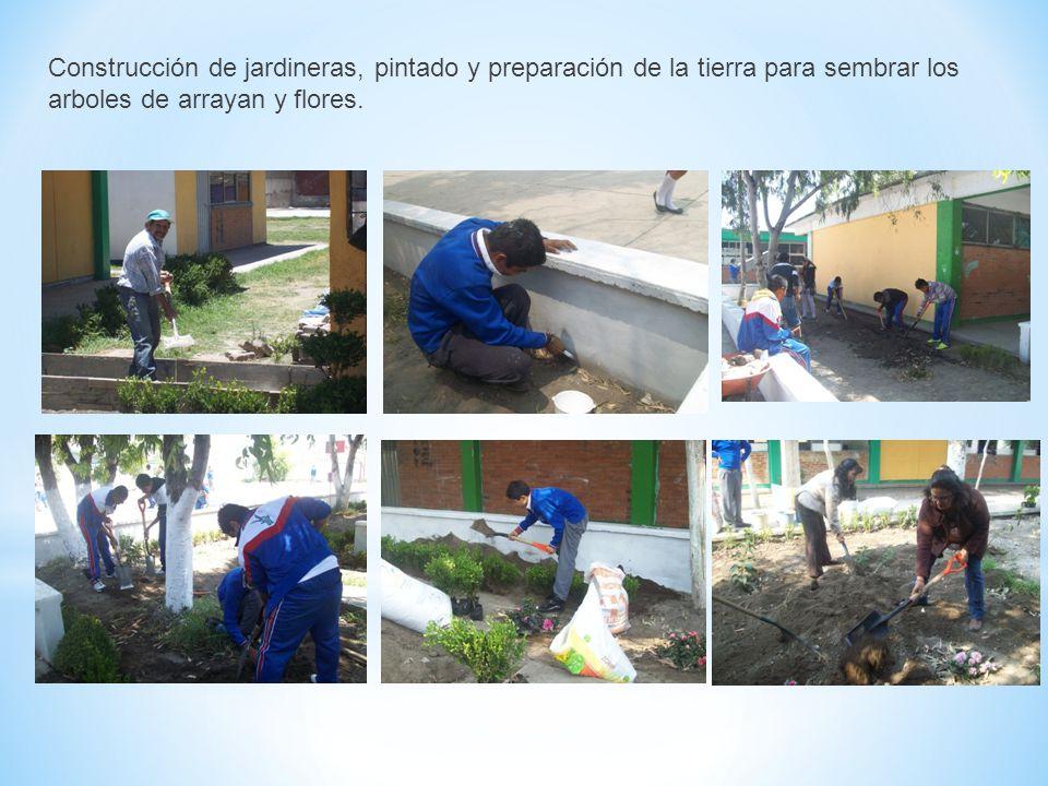 Construcción de jardineras, pintado y preparación de la tierra para sembrar los arboles de arrayan y flores.