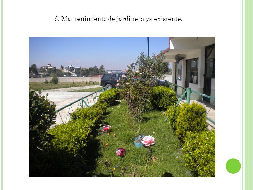 6. Mantenimiento de jardinera ya existente.