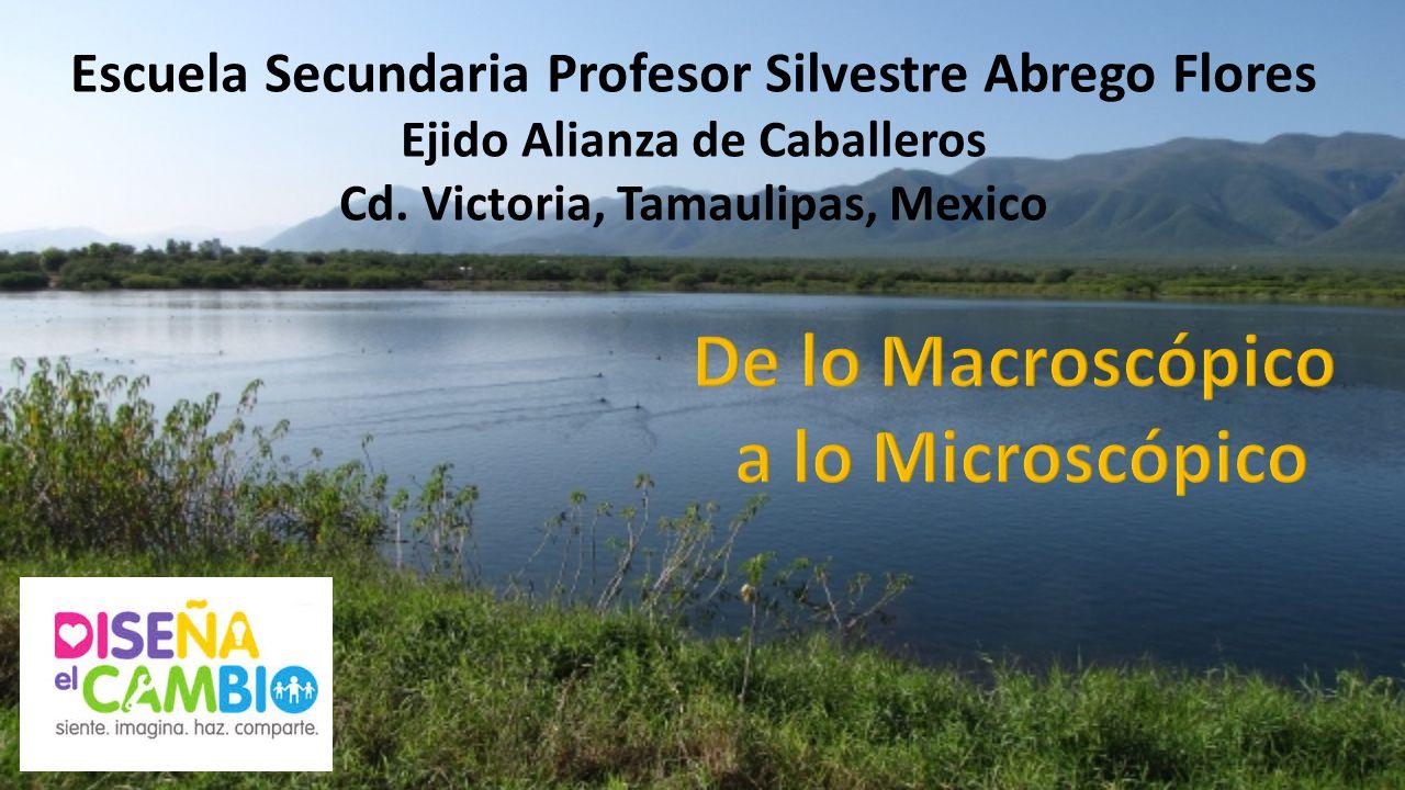 De lo Macroscópico a lo Microscópico