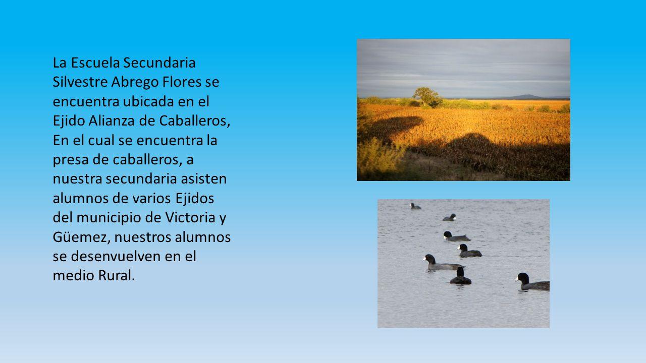 La Escuela Secundaria Silvestre Abrego Flores se encuentra ubicada en el Ejido Alianza de Caballeros,