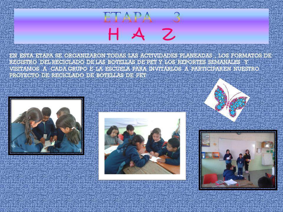 ETAPA 3 H A Z