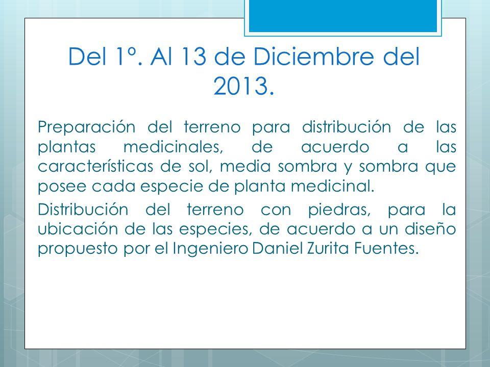 Del 1º. Al 13 de Diciembre del 2013.