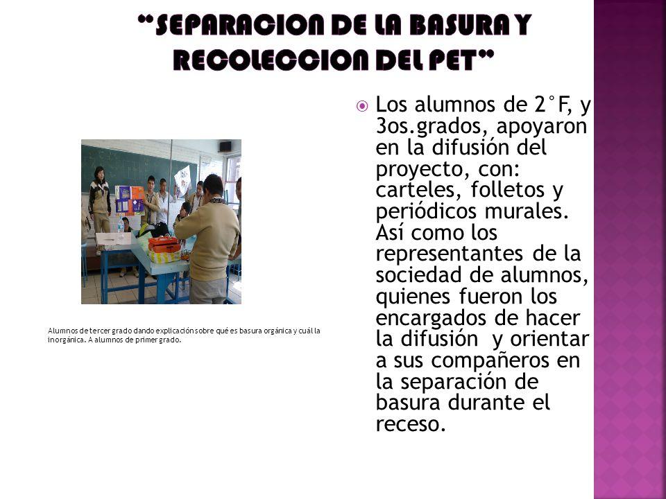 SEPARACION DE LA BASURA Y RECOLECCION DEL PET