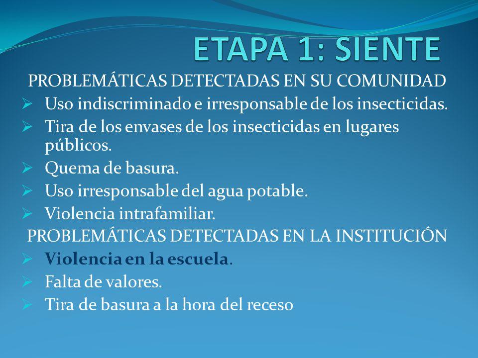 ETAPA 1: SIENTE PROBLEMÁTICAS DETECTADAS EN SU COMUNIDAD