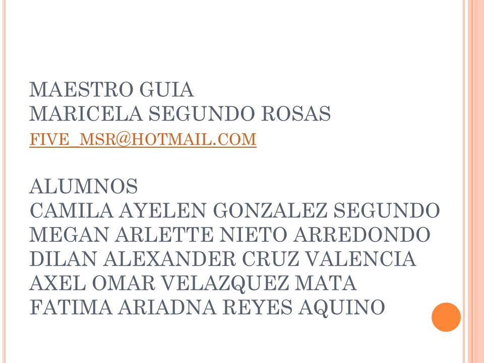 MAESTRO GUIA MARICELA SEGUNDO ROSAS five_msr@hotmail