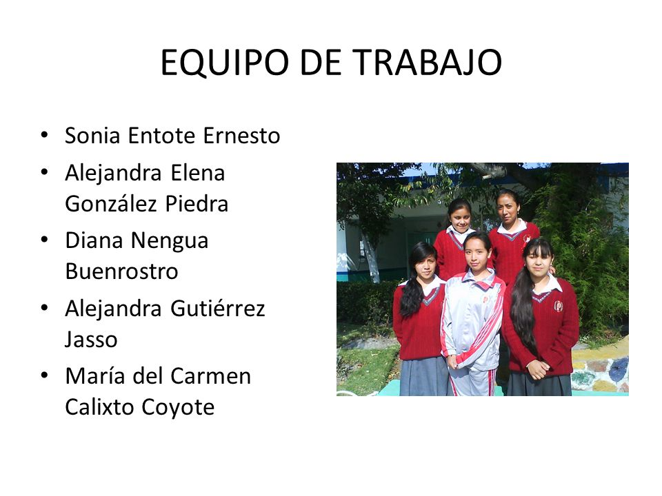 EQUIPO DE TRABAJO Sonia Entote Ernesto Alejandra Elena González Piedra