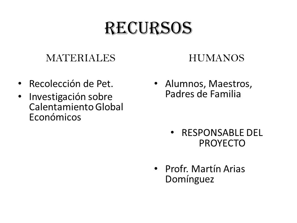 RESPONSABLE DEL PROYECTO