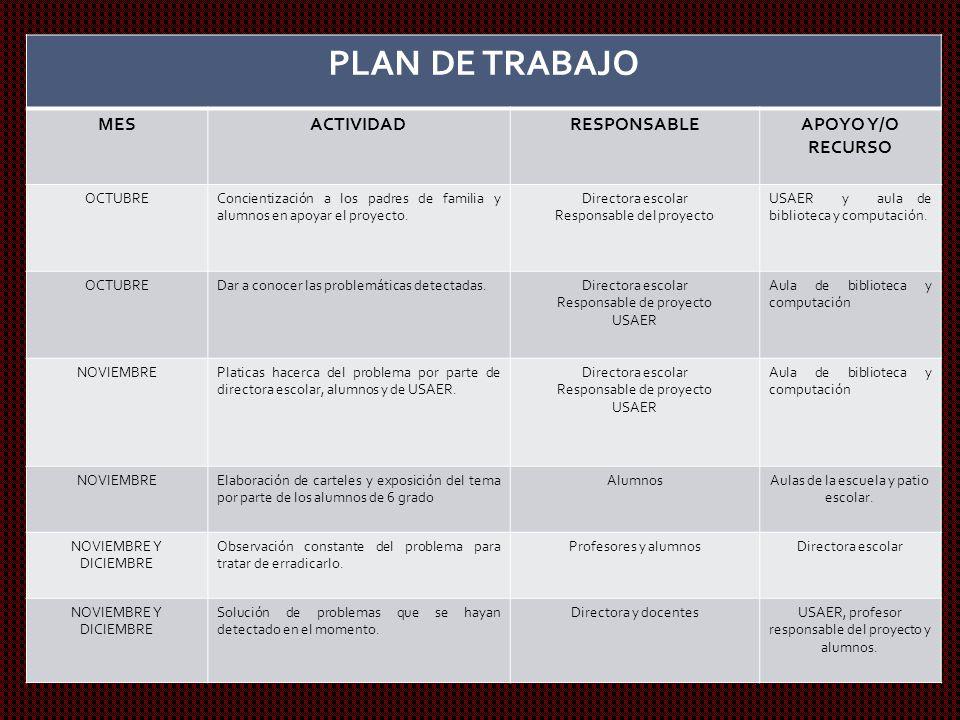 PLAN DE TRABAJO MES ACTIVIDAD RESPONSABLE APOYO Y/O RECURSO OCTUBRE