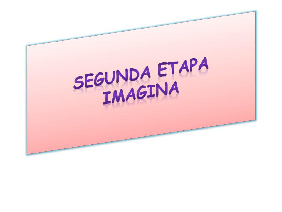 Segunda Etapa Imagina