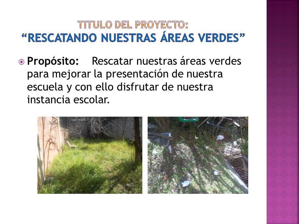 Titulo del proyecto: rescatando nuestras áreas verdes