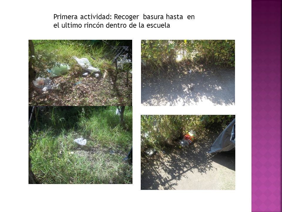 Primera actividad: Recoger basura hasta en el ultimo rincón dentro de la escuela